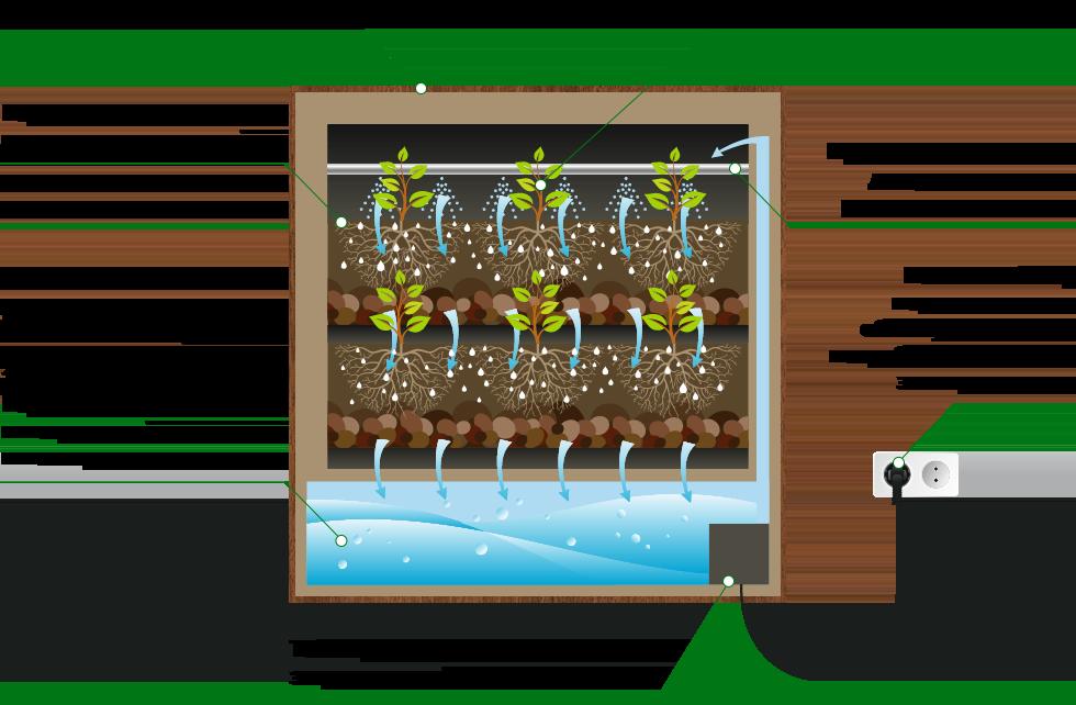 Схема размещения вертикального сада