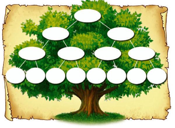 Шаблоны генеалогического дерева