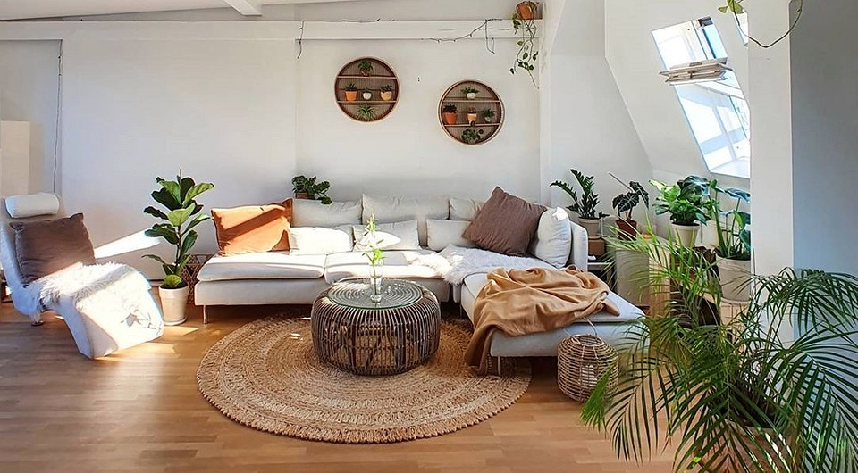 Как выбрать мягкую мебель, если в доме есть животное